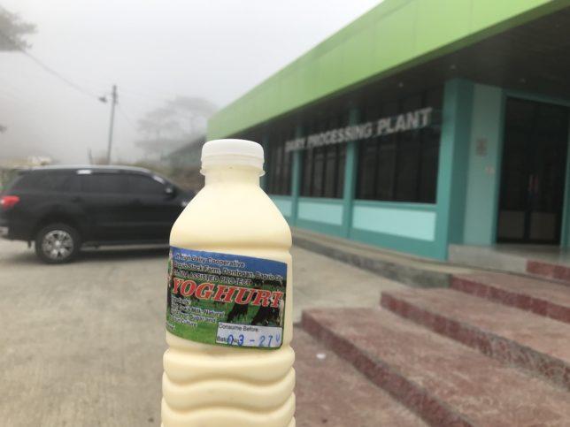 BAGUIO DAIRY FARM