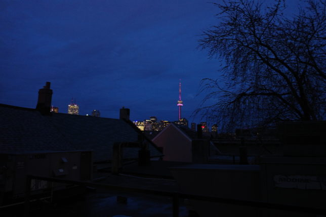 Kensington College Backpackers(CN Tower View)